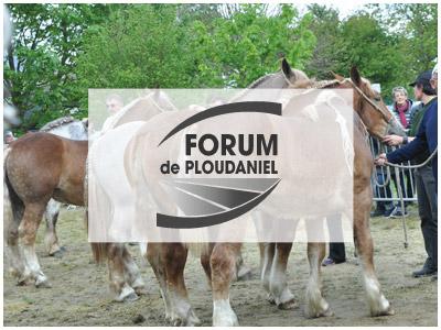 Forum de Ploudaniel